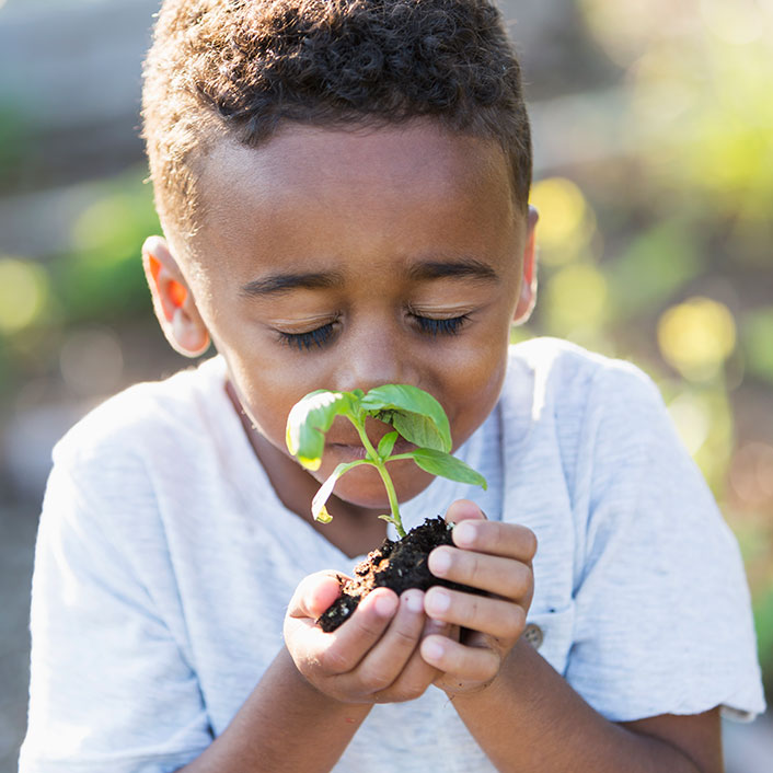Kid Smelling Plant